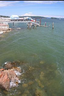 SHORELINE NEXT TO PIER