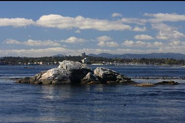 rock where I anchored with Oak Bay in background