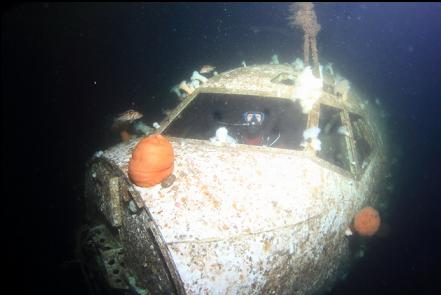 fogged-up photo from second dive