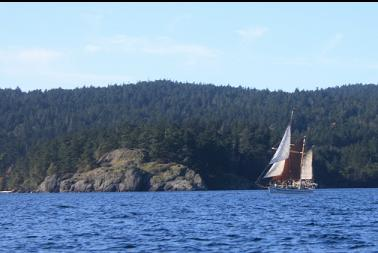 Sailboat in Becher Bay after dive