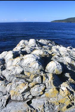 guano-covered rocks