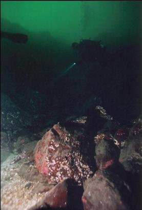 DIVER OVER RUBBLE AREA