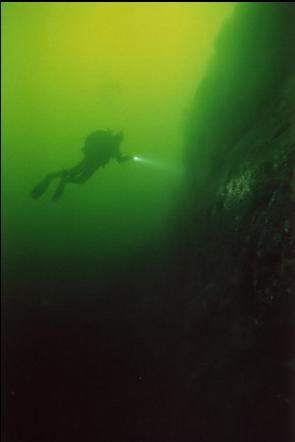DIVER BY WALL