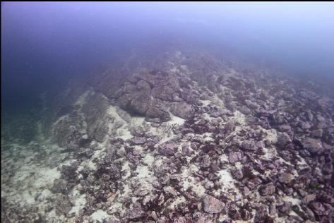 reef and rubble slope