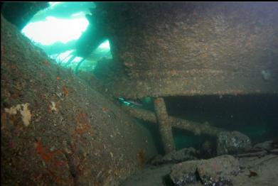 looking under wreckage with stern tube on left