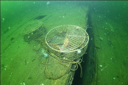 crab traps and gap between drydocks